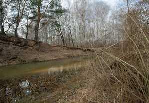 фотография - Участок в старом белоусе у реки, площадью 46 соток