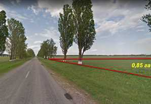 фотография - Продам земельный участок с. Чубинское Бориспольский р-н. 0,85 га.